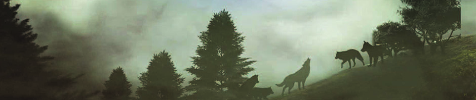 TheClearing_banner
