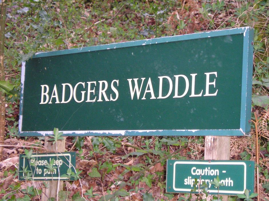 Badger's Waddle